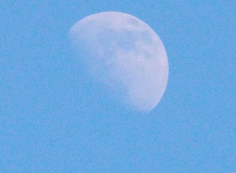 Goodnight Moon Nikon L810 Peaceful Evening Tangled Up In Blue