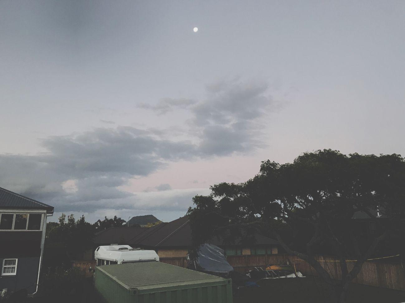Dusk• Moon Sunset Dusk Sky Newzealandbeauty Tauranga NZ