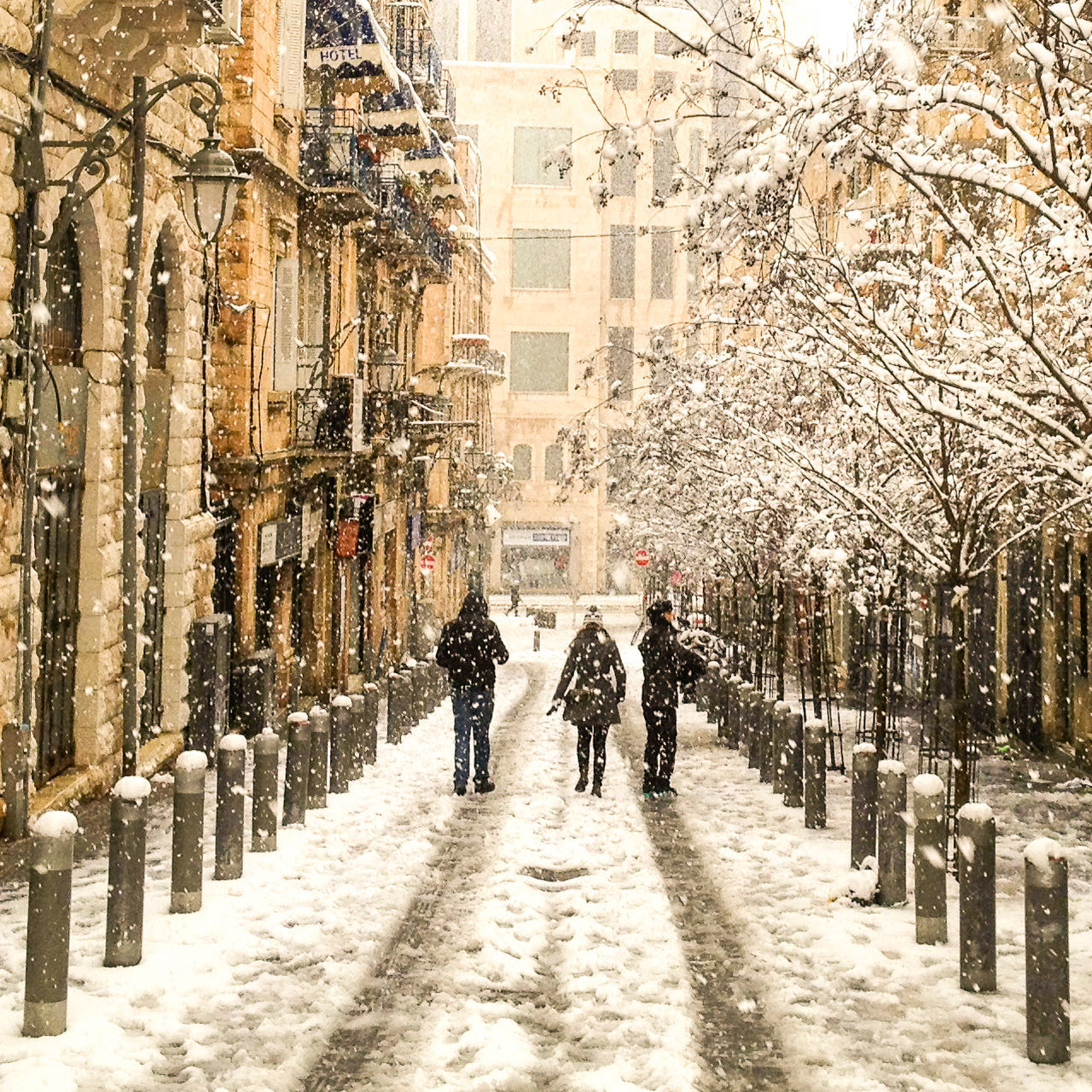 Beautiful stock photos of snowflake,  Adult,  Adults Only,  Architecture,  City