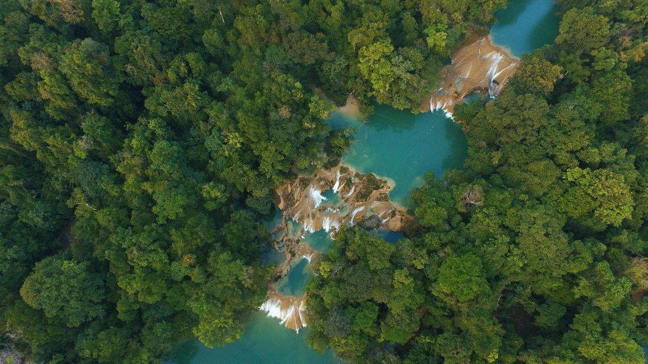 nature, physical geography, green color, no people, water, tree, aerial view, mountain, day, beauty in nature, scenics, outdoors, growth, hot spring, undersea