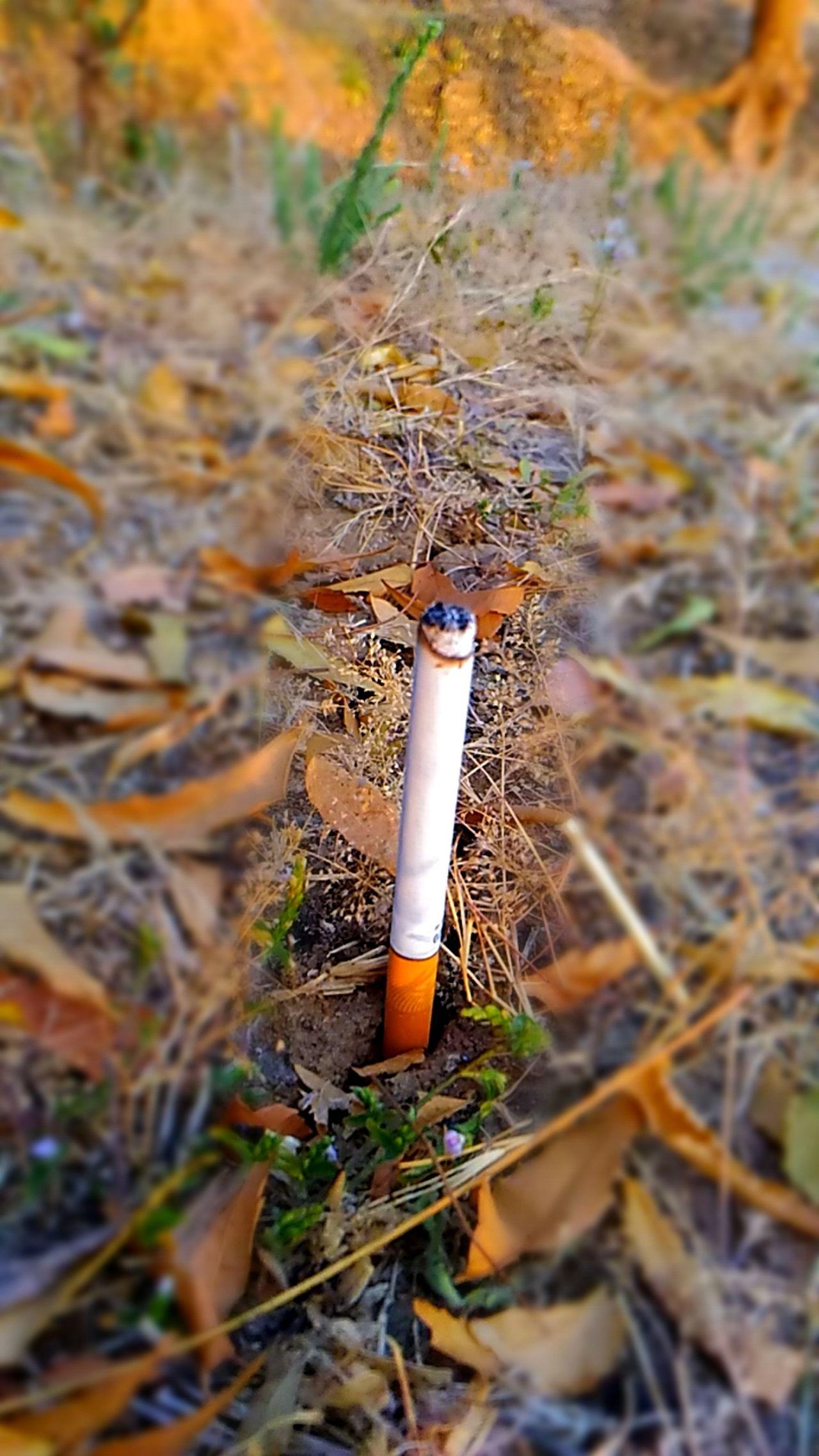 Smoking kills Burning Flame No People