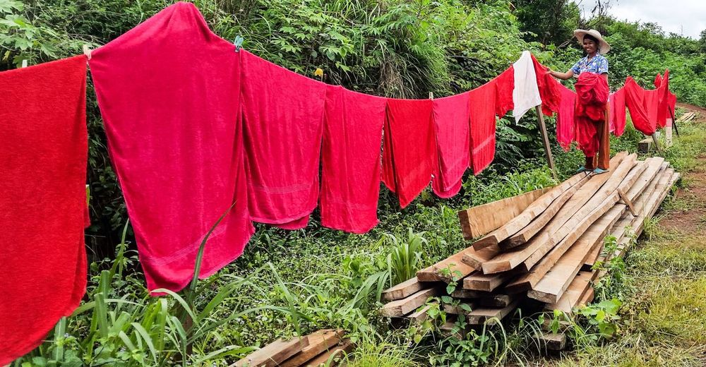 Mondulkiri, Cambodia Mondulkiri Cambodia Hanging Out Washing Line Clothesline Red Towels Red Hanging Out The Washing Middle Of Nowhere Working Outside Cleaner Washing Maid Side Of The Road Woodpile Wood Happy Working