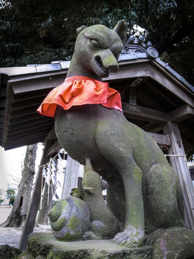 親子の狛狐が珍しくて撮りました🐺🐺✨親子 狐 狛狐 稲荷神社 神社 Japanese Shrine Fox🐺 Stone Statue Hello World Walking Around Enjoying Life Streetphotography Street Snaps Tokyo Street Photography Showcase March