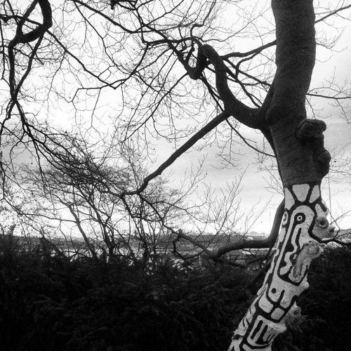 Nature Streetart Blackandwhite Painting Tree Tag Nature/culture