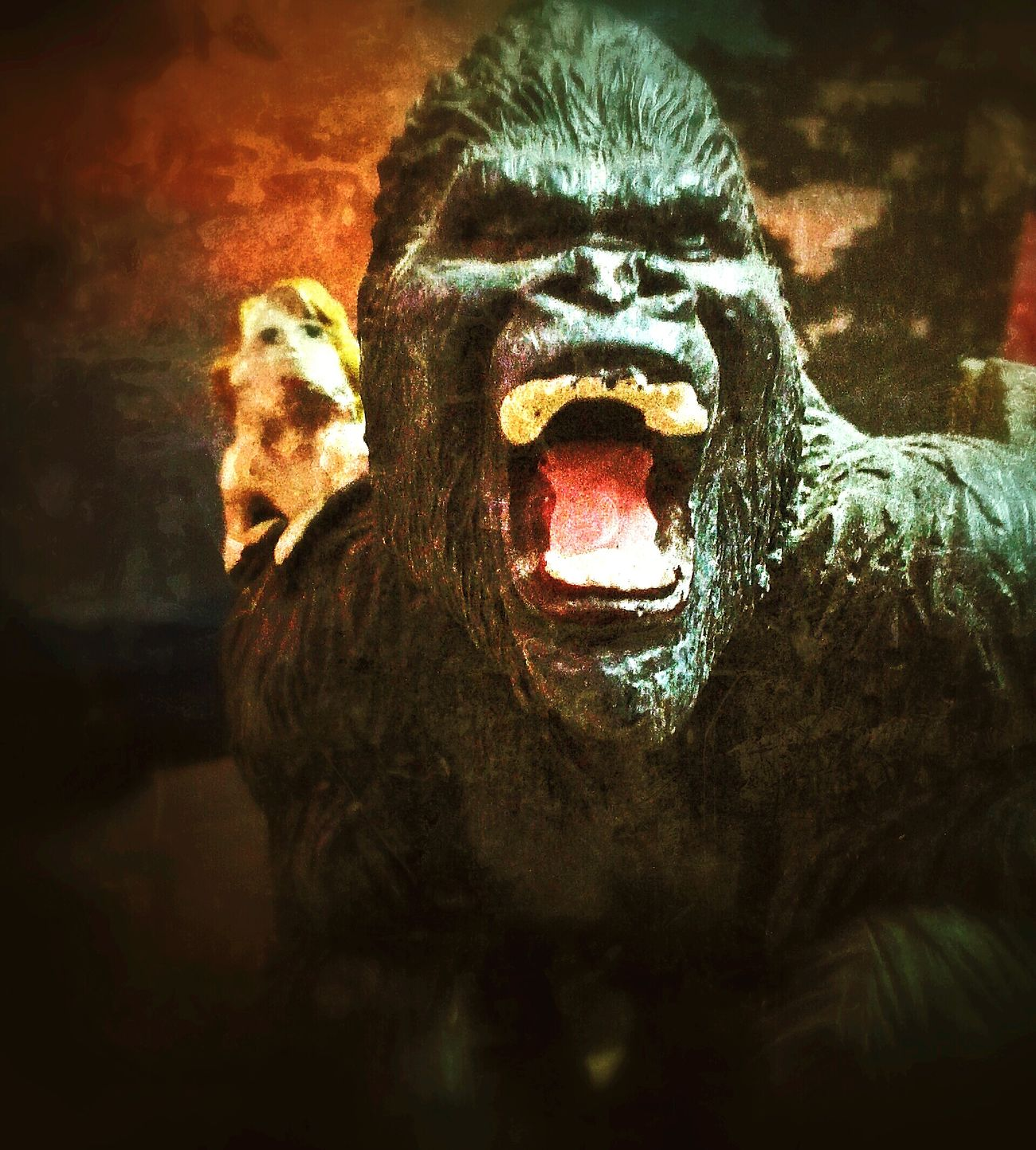 King Kong collectible and the front cover of my daily devotional!! Everyday Fun Home Imagination Moviemagic
