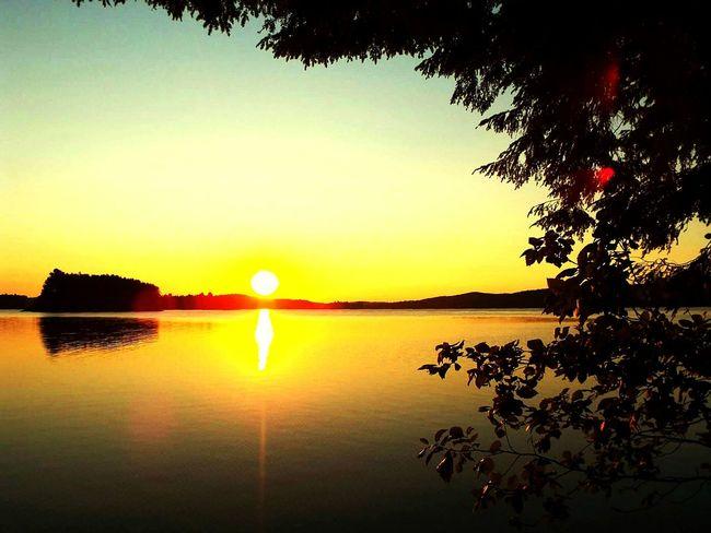 Colour Of Life Lake Sunrise Sun Orange Beauty In Nature Reflection Algonquin Park Algonquinprovincialpark Yellow