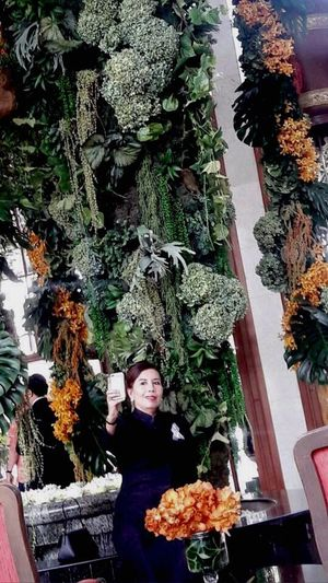 Flowers is beautiful Flowerdecorarion Lobby Hotel Hotel Lobby Mandarinbangkokhotel Flower Tree One Person Variation Lifestyles Real People Standing Adults Only Choice People Christmas Tree Nature Gift Day Bouquet Outdoors Adult Flower Arrangement Freshness Only Women