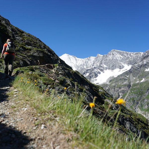 Seeking glaciers Enjoying Life Flowers Mountains Scenery Peaks Switzerland View Getoutside SwissAlps! Relaxing
