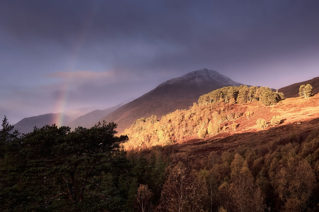 Rainbow by Sgurr na Lapaich, Glen Affric Autumn Awesome Beauty In Nature Caledonian Forest Highlands Landscape Landscape_Collection Landscape_photography Light Light And Shadow Morning Morning Light Mountain Nature Outdoors Rainbow Scotland Sky And Clouds Tree