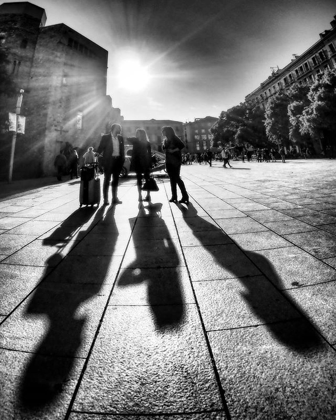 I Giganti della catalunya Giants of catalunya Ig_asti_ Ig_catalunya Ig_biancoenero _world_in_bw Dsb_noir Eranoir Bnwitalian  Excellent_bnw Ig_worldbnw Vivobnw Igclub_bnw Loves_noir Igs_bnw Ig_contrast_bnw Master_in_bnw  Top_bnw Tv_pointofview_bnw Catedrall Ig_italia_ Barcellona Featuredmeinstagood Ig_bcn Onlyinbcn Gegants