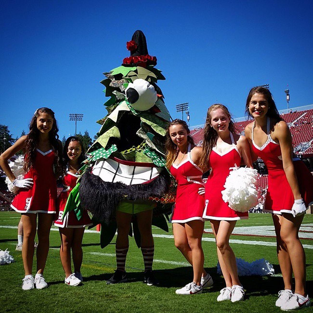 Mascot Cheerleaders  Stanford College Football Week1 pt.2 CollegeSpirit