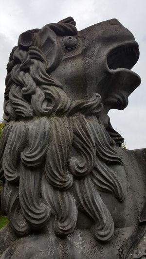 Lion Sculpture Shocked Face Statue