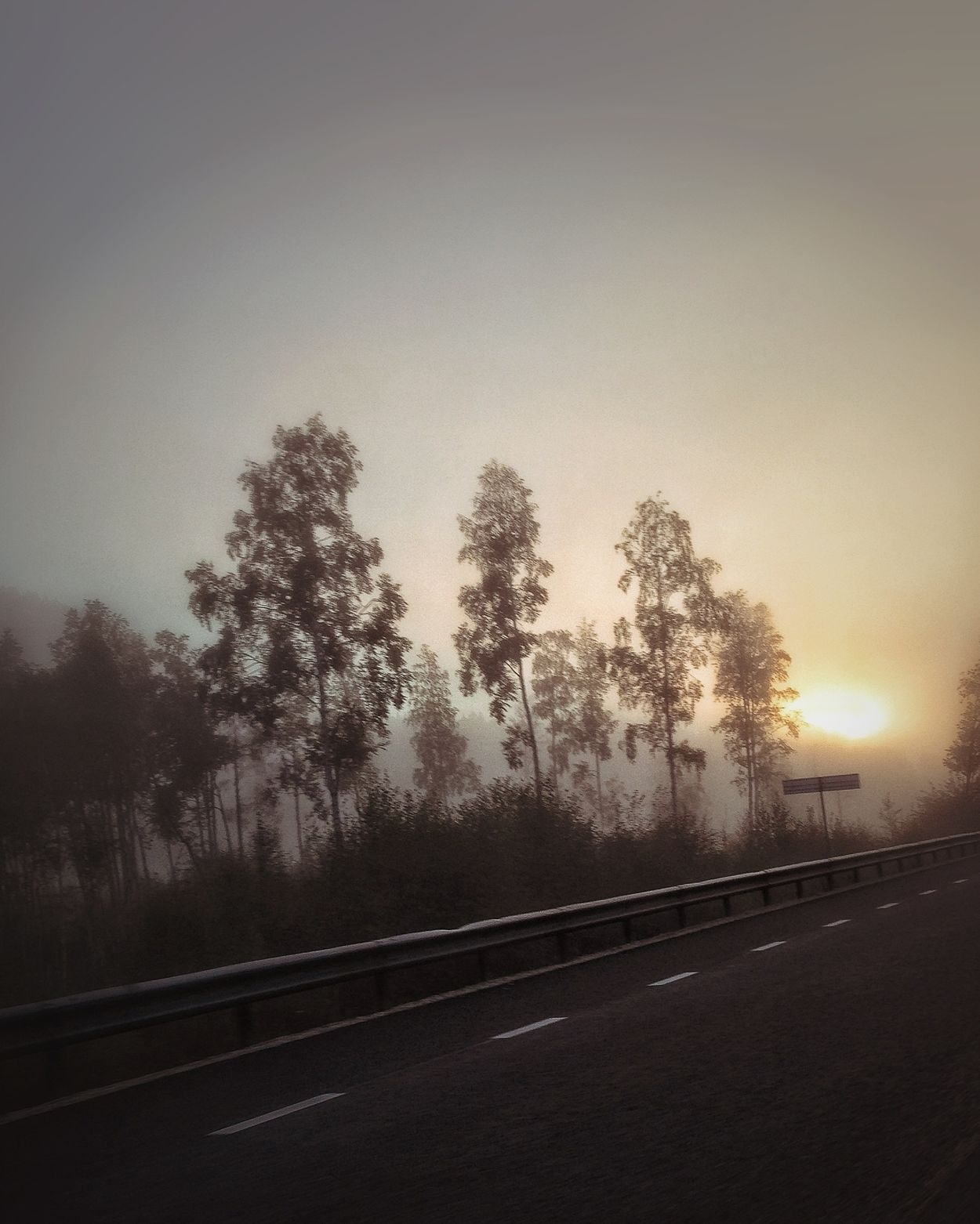 On The Road ! EyeEm Best Shots - Trees EyeEm Nature Lover