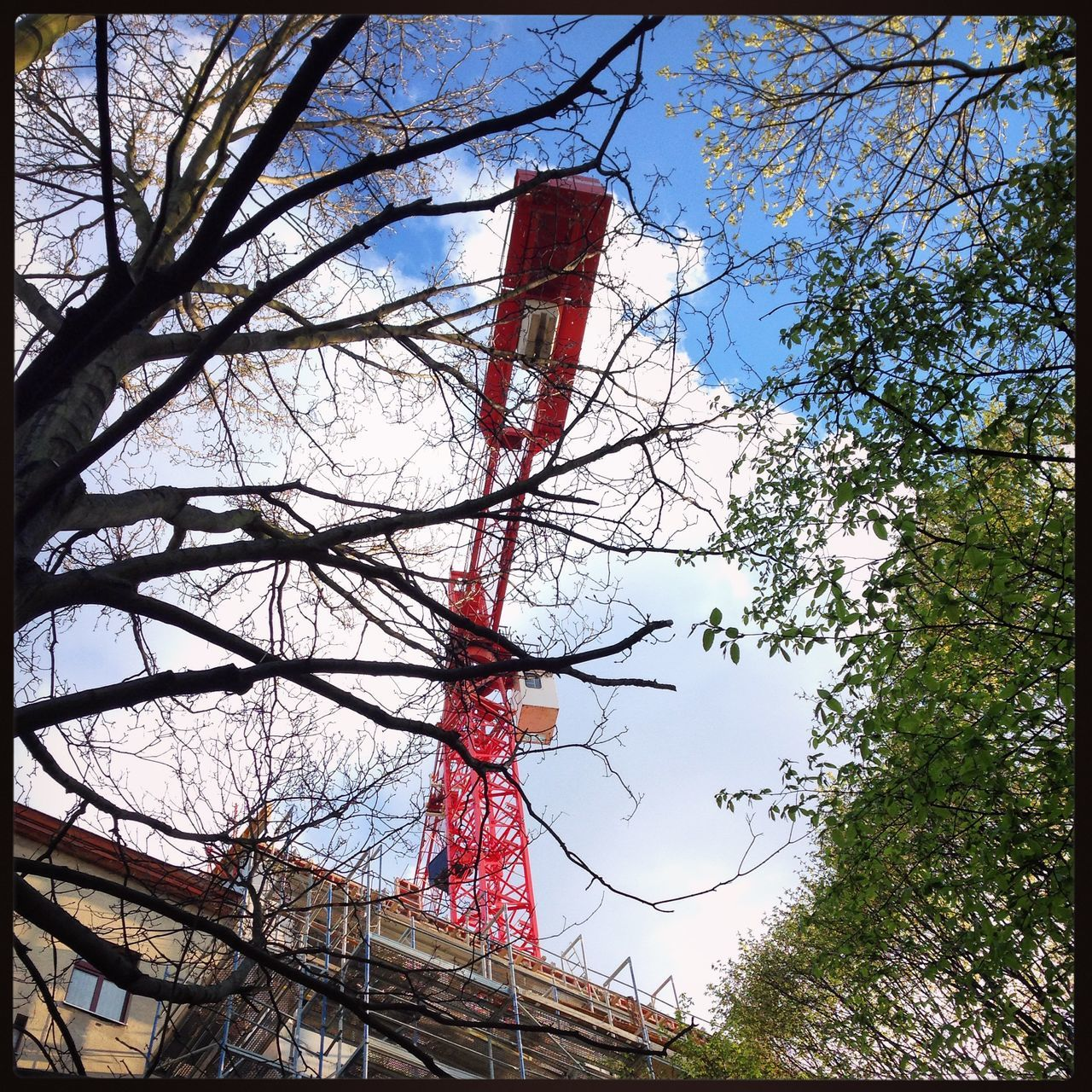 Architecture Bare Tree Baugruppe Blue Sky Branch Clouds And Sky Connection Construction Construction Site Crane Day Kreuzberg Low Angle View No People Outdoors Red Crane Sky Tree Tree