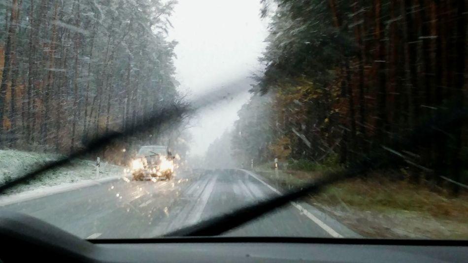 Schneefahrt Nature Tree No People Driving Car Snow ❄ Snowing Road Straße Landstrasse Schnee Fahren Bewegung Motion Verkehr Taking Photos