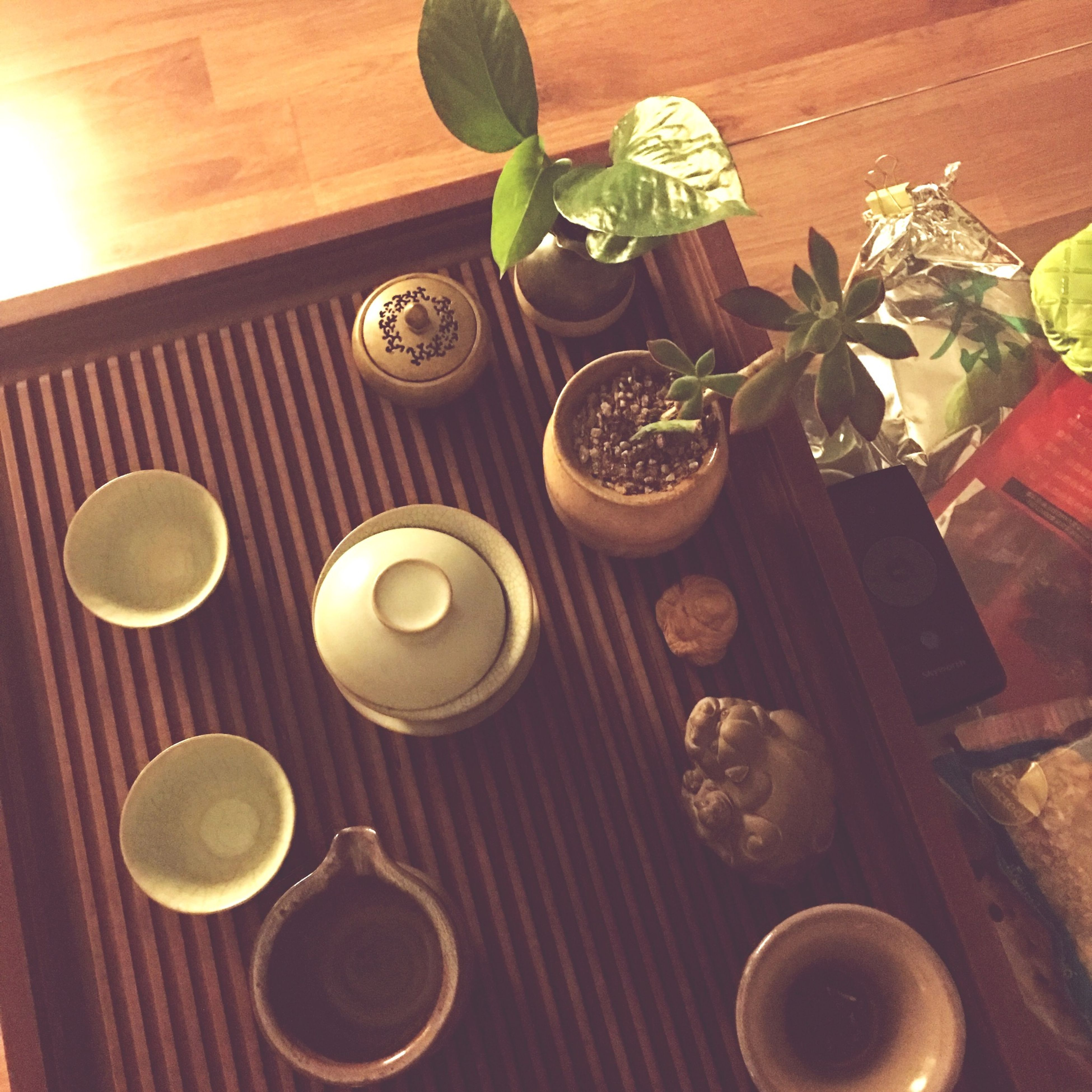 indoors, table, wood - material, freshness, still life, high angle view, plant, potted plant, close-up, leaf, no people, home interior, vase, wooden, growth, flower, sunlight, food and drink, day, variation