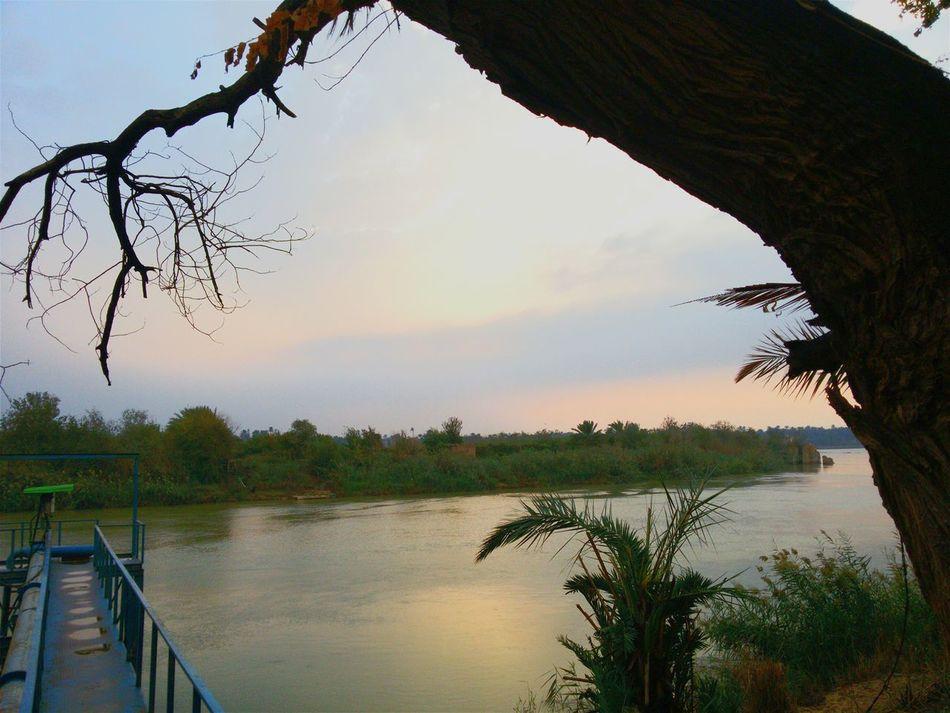 RePicture Masculinity Enjoying Photography All Time World EyeEm Best Shots First Eyeem Photo EyeEm Gallery Iraq_photo Iraq Sun Alforat River