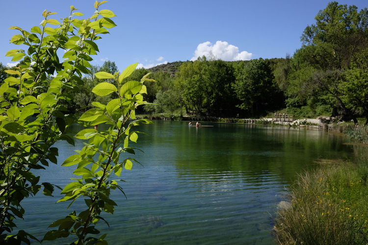 Beauty In Nature Day Growth Lake Nature No People Outdoors Plant Scenics Sinizzo Sky Tranquility Tree Water