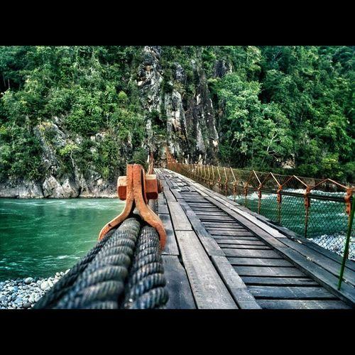 Brigde Peru Chanchamayo  River life jungle selva