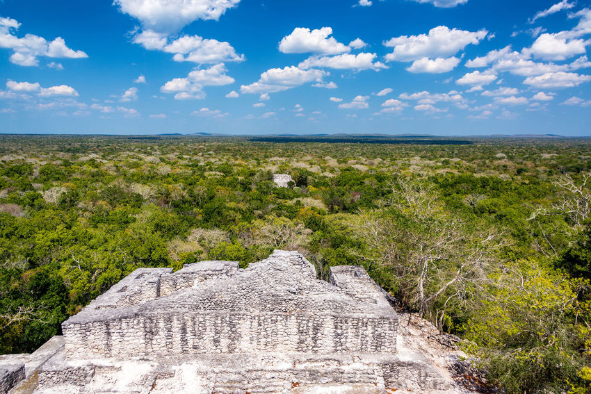 Beautiful view of the ruins and jungle and deep blue sky in Calakmul, Mexico Architecture Calakmul Campeche Central America Mayan Mayan Ruins Mexico Pyramid Ruins Travel Yúcatan Biosphere Calakmul Biosphere Reserve Historic Jungle Landscape Maya Rain Forest Reserve Temple Tourism Travel Destinations Xpujil Yucatan Mexico Yucatan Peninsula