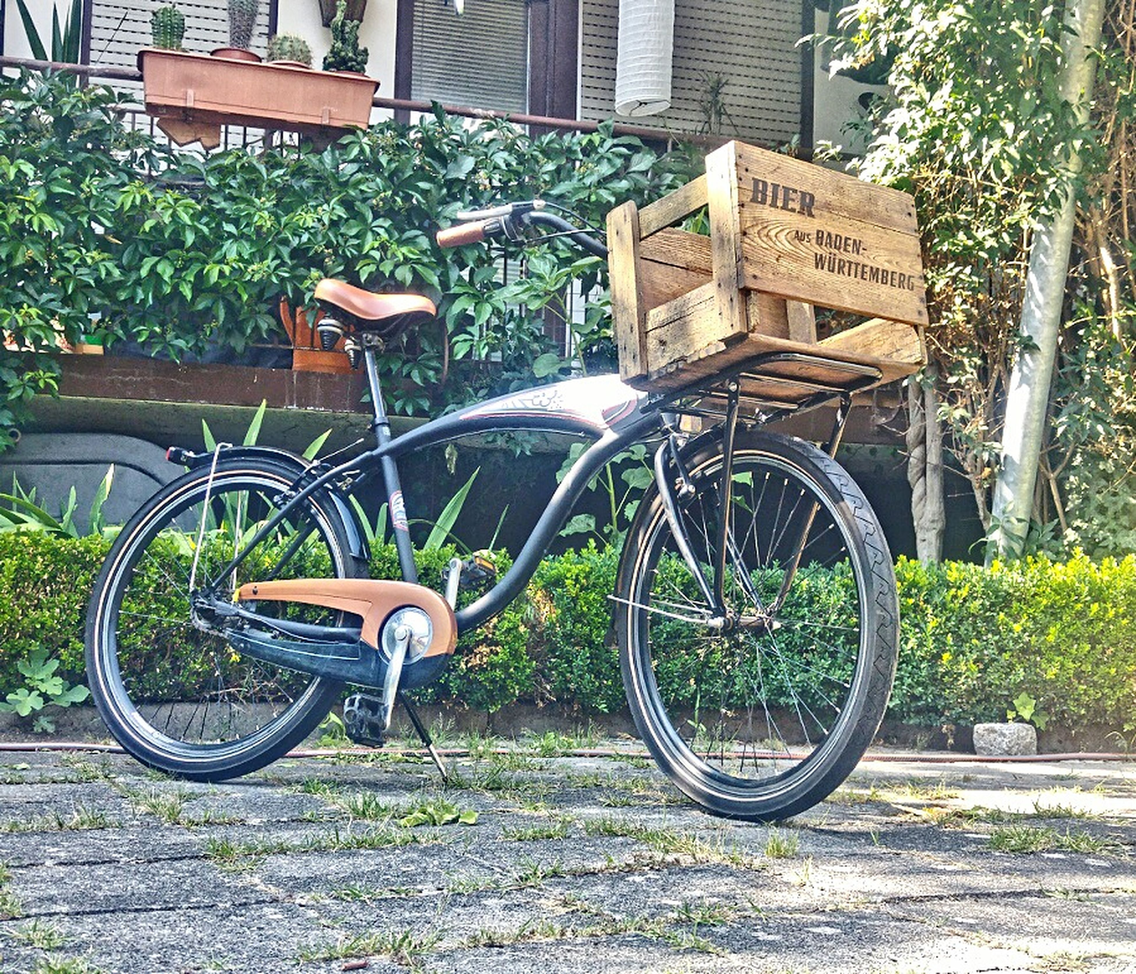 bicycle, transportation, mode of transport, outdoors, land vehicle, day, stationary, building exterior, architecture, built structure, no people, plant, bicycle rack, tree