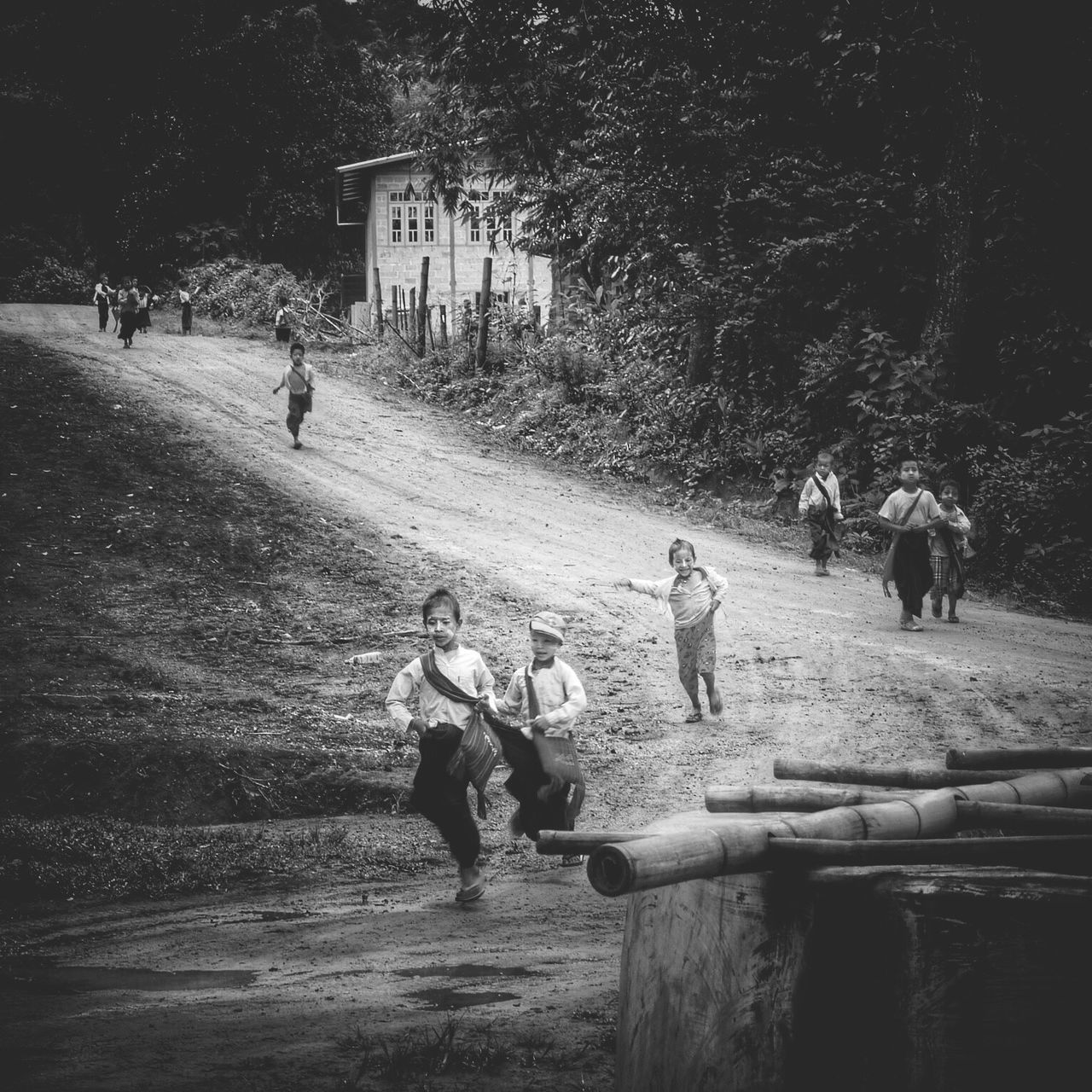 real people, men, tree, outdoors, domestic animals, lifestyles, leisure activity, large group of people, playing, mammal, togetherness, day, nature, friendship, people
