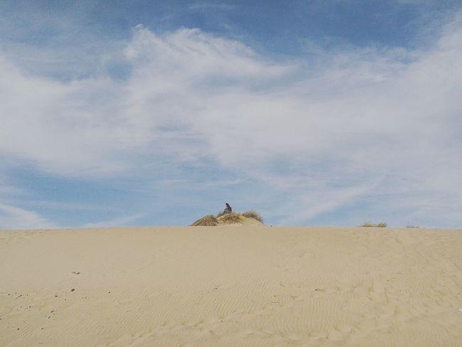 Sand Kingdom Playful