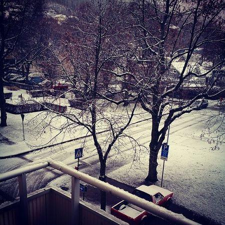 Välkommen tillbaka vintern! :) Sn ö Kallt Vitt Sn öflingor snow stanna kvar nu då