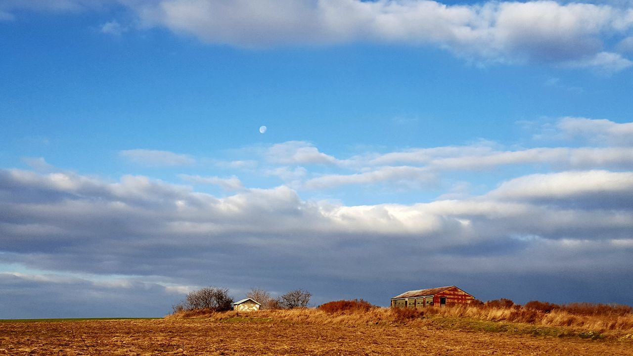Moon is taking its time setting this morning Agriculture Field Rural Scene Outdoors Cloud - Sky Nature Sky No People Moon Setting With Clouds Morning