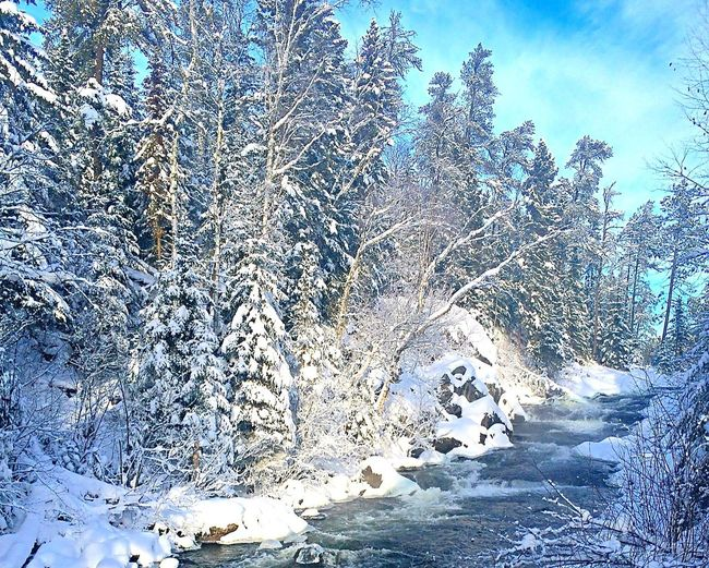 It's Cold Outside Canadian Shield  Kenora Canadiannature Ontario River Canadianwinter Snow Rushing River Provincial Park Landscapes With WhiteWall Nature's Diversities
