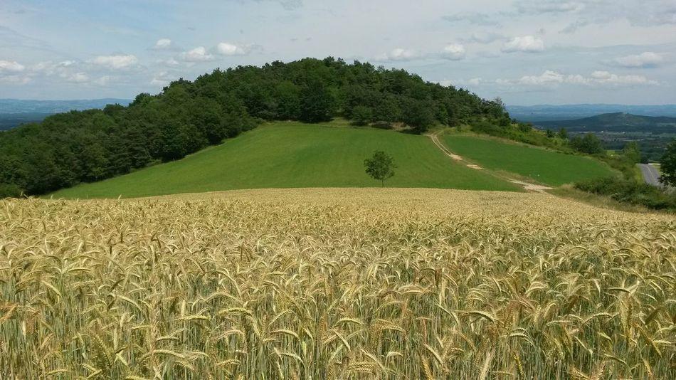 Natural Beauty Country Enjoying Life