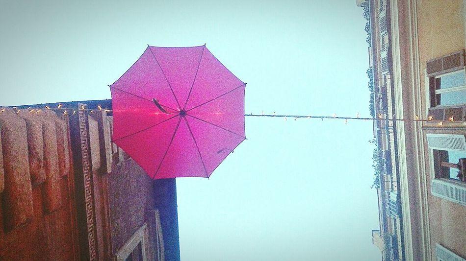 Romestreets Rome Through My Eyes Walkingwithyou Cheektocheek Umbrella Violet Funnylight