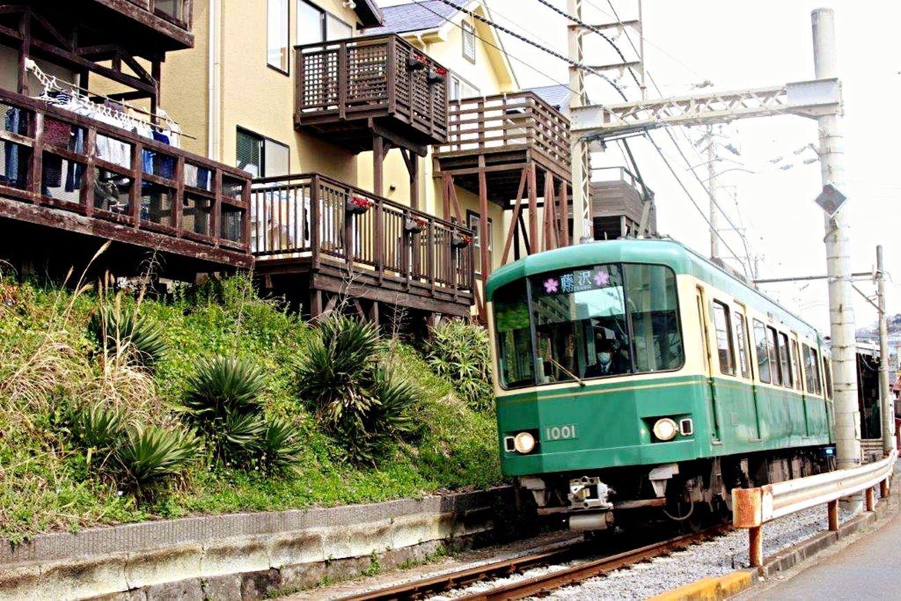 鎌倉 Kamakura Kamakura Japan Japan 江ノ電 Enoden Train Architecture Eyeemphotography Photography Photo EyeEm Gallery Photographic Memory Green Green Color