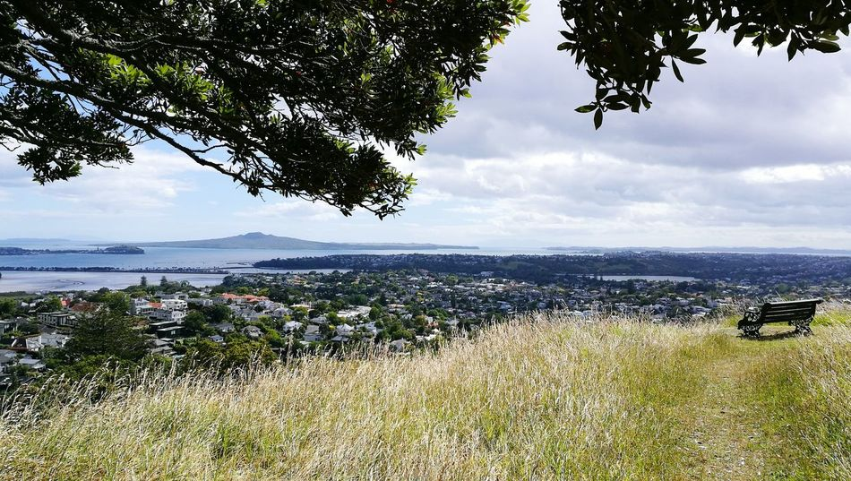 Tree Sea Nature Horizon Over Water Beach Water Scenics Beauty In Nature Landscape Plant Sky Tranquility No People Cloud - Sky Social Issues Outdoors Day Rangitoto Summit View Auckland City Waitemata Harbour EyeEmNewHere
