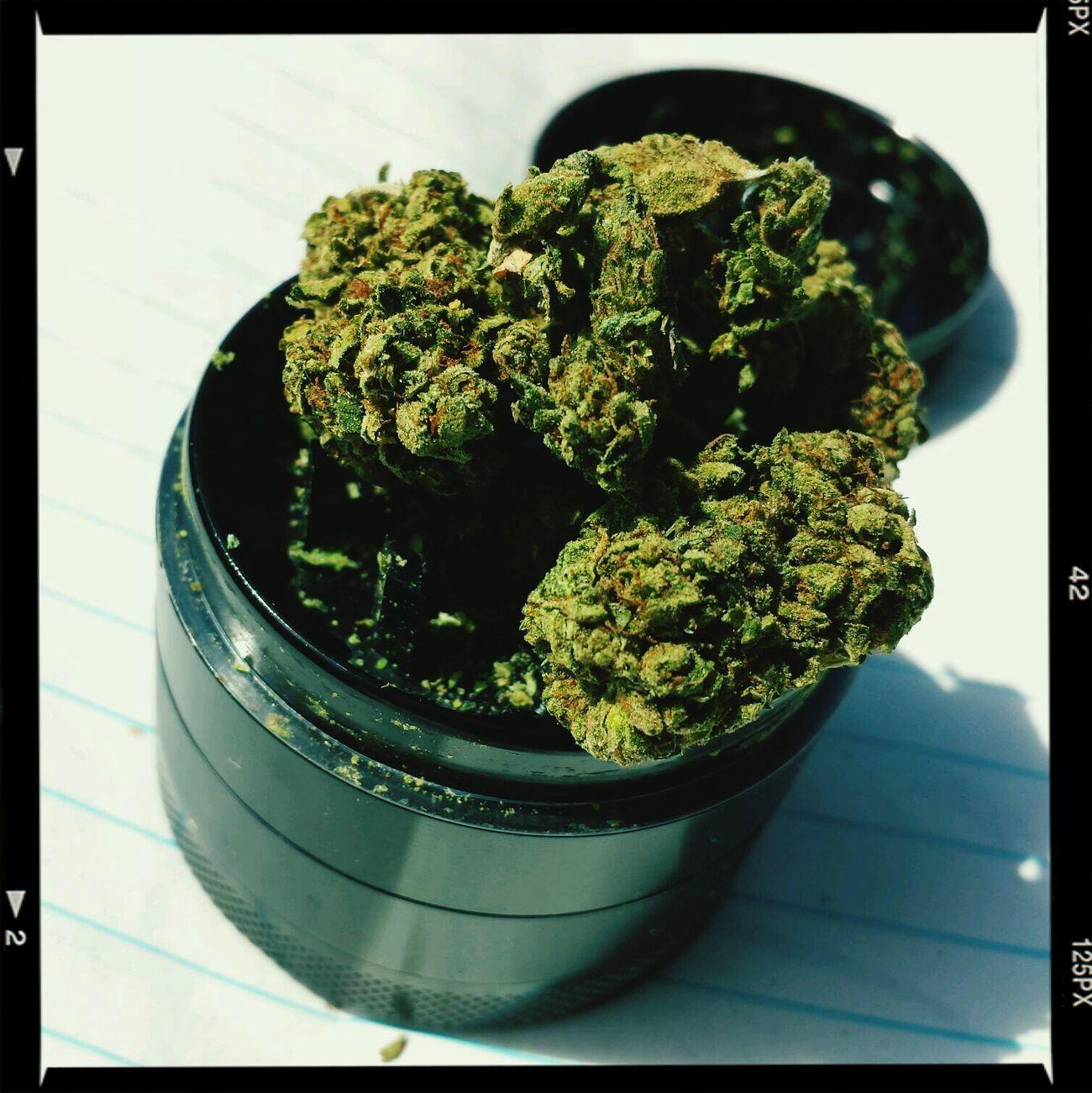 Two grams lay upon my grinder ??? Highlife Marijuana Kushcoma Crystalized