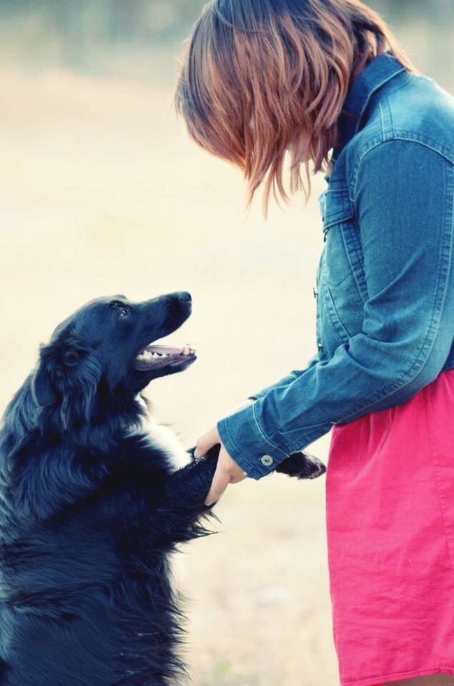 Womansbestfriend  Dog Love Senior Portrait Notherdog