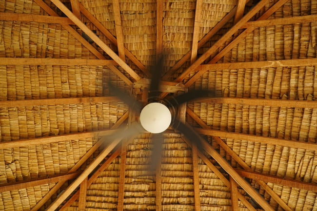 #ceiling Fan #deiling #motion #Need For Speed Architecture Directly Below