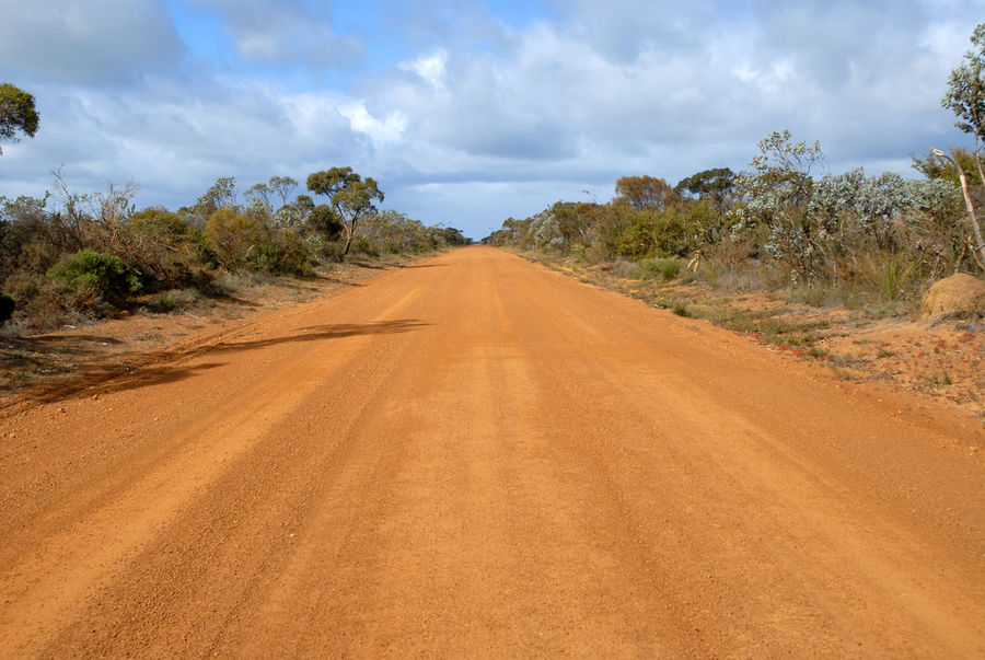 Outback dirt track Clouds And Sky Day Diminishing Perspective Dirt Track Empty Landscape Empty Road Horizon Journey No Cars  No People No Traffic Outback Outback Australia Red Dirt Road Road Roadtrip Scenic Track Travel WA