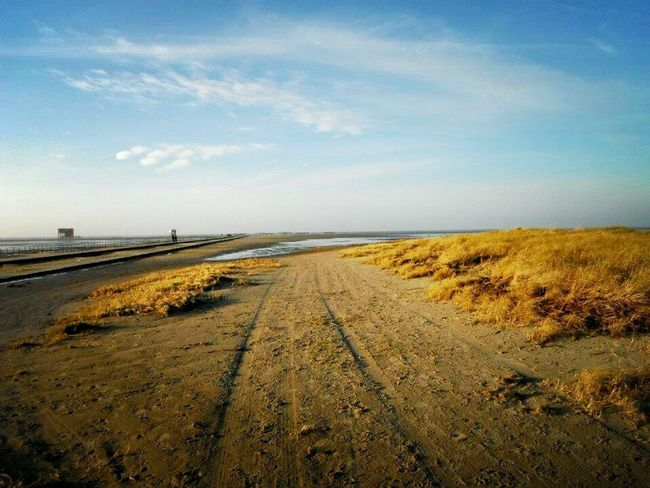 Tranquil Scene Sea Horizon Over Water Empty Sky Tranquility Water Scenics Beach Travel Destinations Calm Long The Way Forward Blue Day Beauty In Nature Tourism St. Peter Ording Eiderstedt Nordfriesland Northsea Nordseeküste Germany