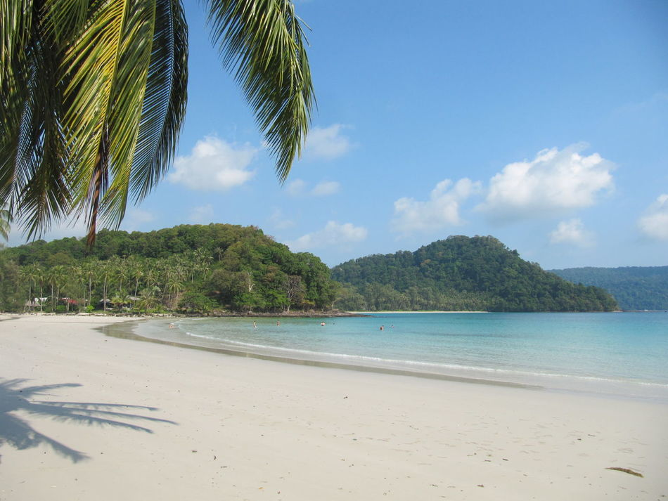 Spotted In Thailand Koh Kood Tree Sea Beach Sky Blue Sand Water Nature Palm Tree No People Horizon Over Water Beauty In Nature Scenics Sunlight Outdoors Day Tranquil Scene Cloud - Sky