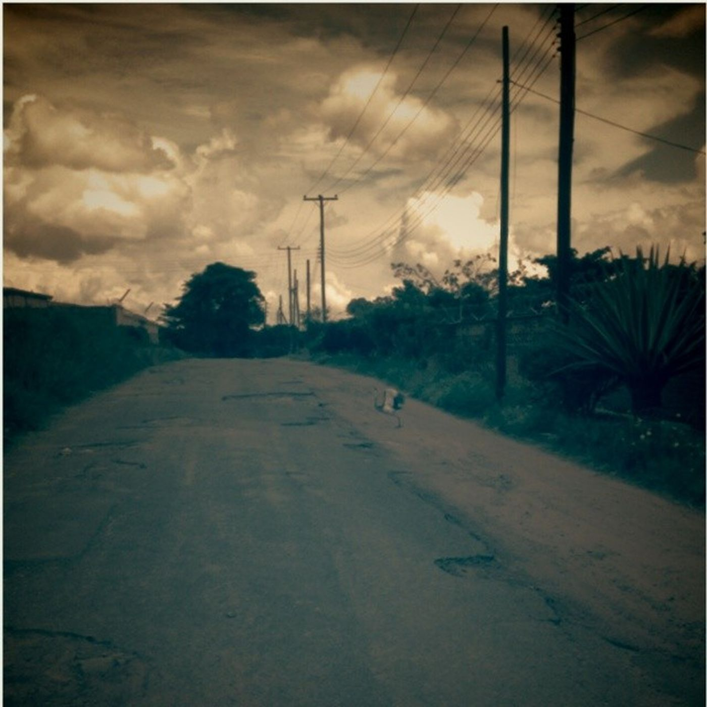 My amatuer attempt at photography and yes that is Blantyre, Malawi Photography Art Artistic DzyneArtz Lonelyroad Blantyre Malawi