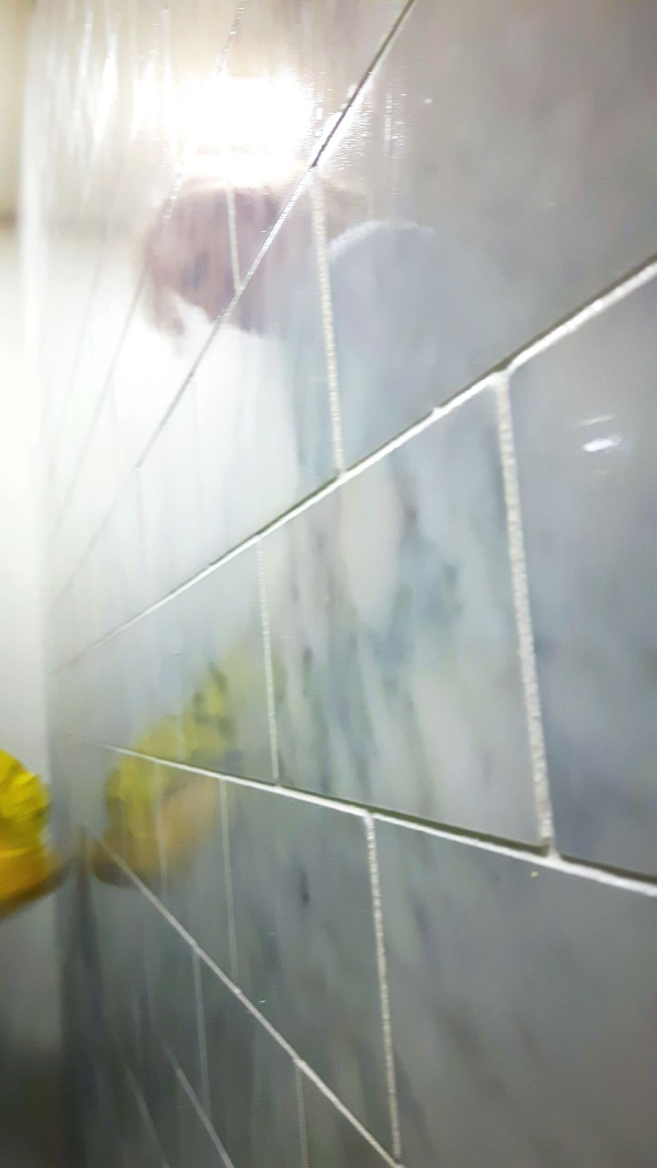 Reflection Tiled Wall Grout