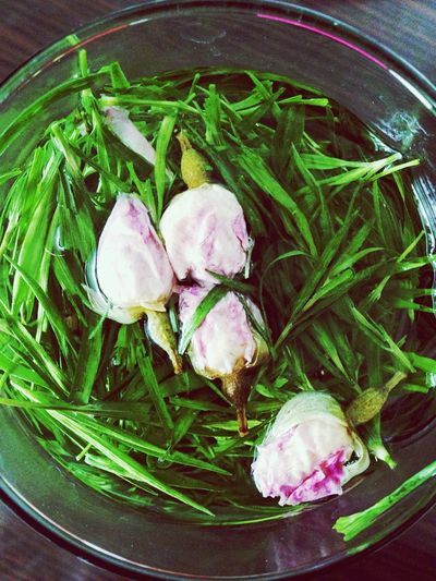 竹叶青tea