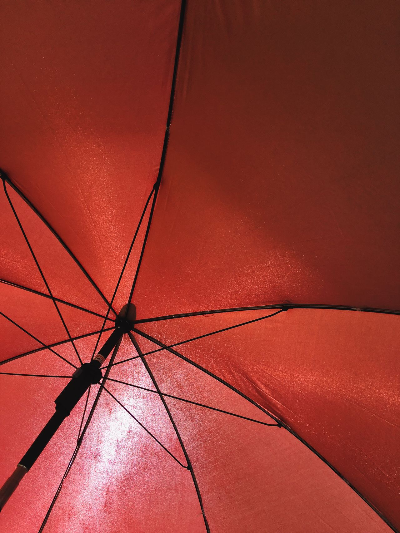 Full Frame Shot Of Red Parasol Back Lit Backgrounds Beach Umbrella Close-up Color Image Day Directly Below Full Frame Low Angle View No People Outdoors Parasol Photograpy Protection Red Shelter Single Object Summer Sunlight Sunshade Vertical