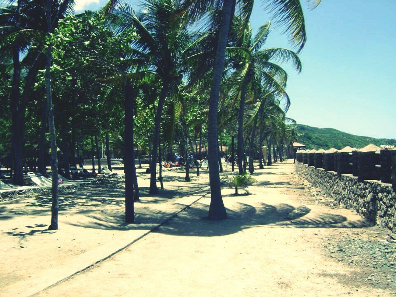 Haiti Missing Haiti Cap Haitien This Is Haiti Haitian Beach Beautiful