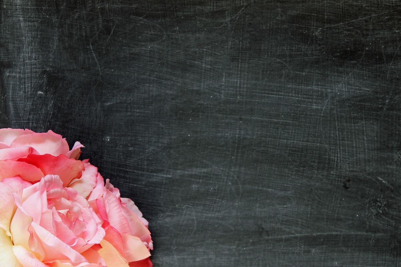 Floral chalkboard Beautiful Black Blackboard  Blank Blooms Border Celebration Chalkboard Chic Display Empty Space Event Festive Floral Border Flower Shop Flowers Frame Menu Board Message Party Partying Presentation Room For Copy Textured  Wedding