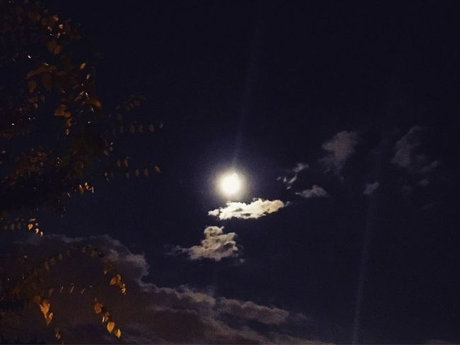 Nature Photography Fine Art Photograhy NYC Nyclife Priceless Moments Moonlight Moon Summer