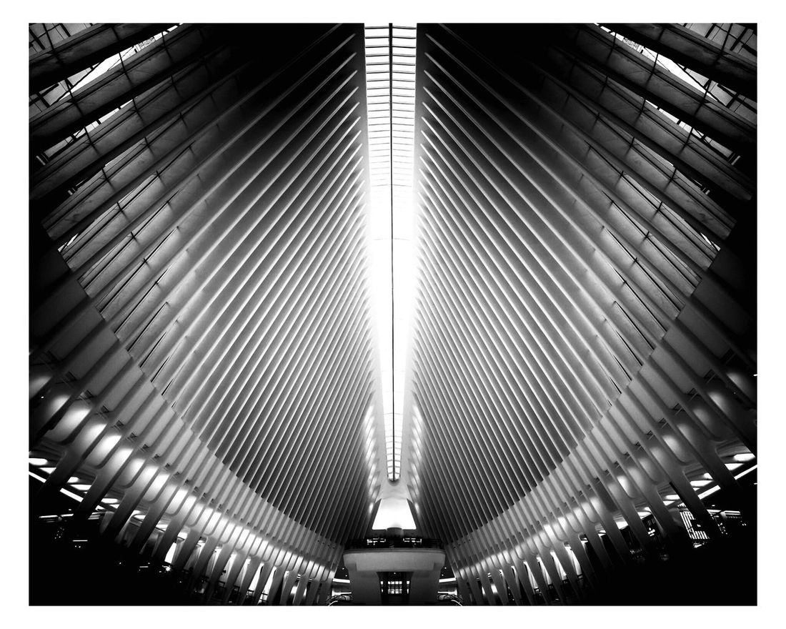 Twin towers shopping centre - doesn't it look like angels? Modern Pattern No People Indoors  Silhouette New York Tranquility Built Structure Building Exterior Low Angle View Day Building Buildings Architecture Travel Canon 5d Mark Lll Canon 16-35 2.8 Ii Angel Silhouettes Fine Art Photography