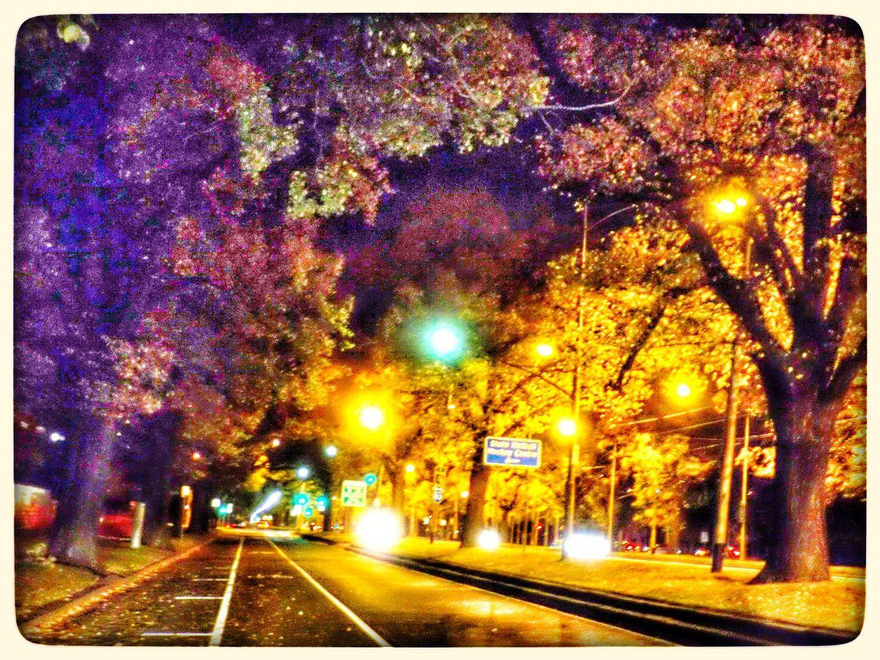 illuminated, night, transportation, tree, street light, railroad track, outdoors, no people, road, city, sky, nature