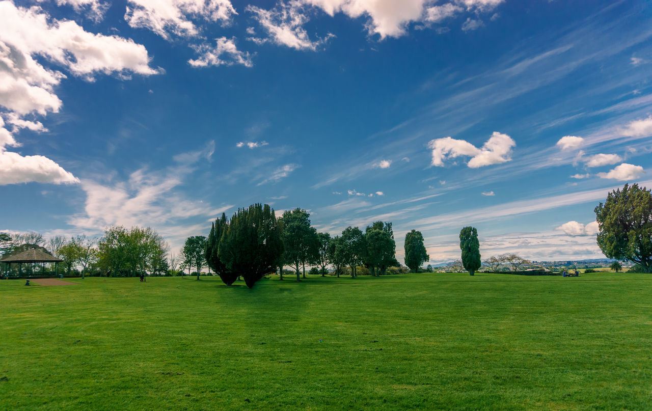 Cornwall Park. Auckland, New Zealand. Auckland Beauty In Nature Blue Cloud Cloudy Cornwallpark Field Grass Grassy Green Growth Idyllic Landscape Lawn Nature Newzealand Outdoors Park Scenics Sky The Essence Of Summer Tranquil Scene Tranquility Travel Destinations Tree